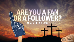 Are You a Fan or a Follower?