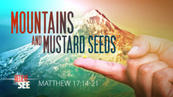 Mountains and Mustard Seeds