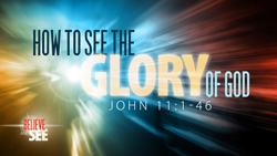 How to See the Glory of God