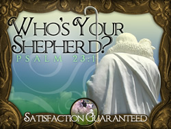 Who's Your Shepherd?