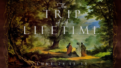 The Trip of a Lifetime