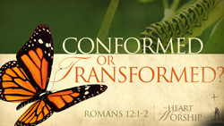 Conformed or Transformed?