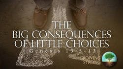 The Big Consequences of Little Choices