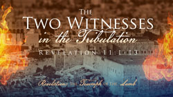 The Two Witnesses in the Tribulation