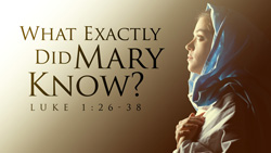 What Exactly Did Mary Know?