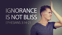 Ignorance Isn't Bliss