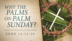 Why the Palms on Palm Sunday?