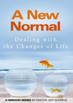 A New Normal - Series