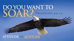 Do You Want to Soar?